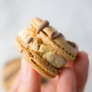 Peanut powder macaron shells filled with homemade nougat (easy peasy), dulce de leche caramel and salted roasted peanuts. All drizzled with milk chocolate to finish!