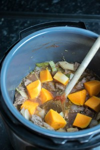 Instant Pot Beef Stew (Syn Free)